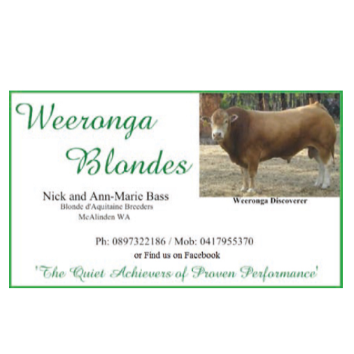 Weeronga Blondes