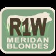 Meridan Blondes