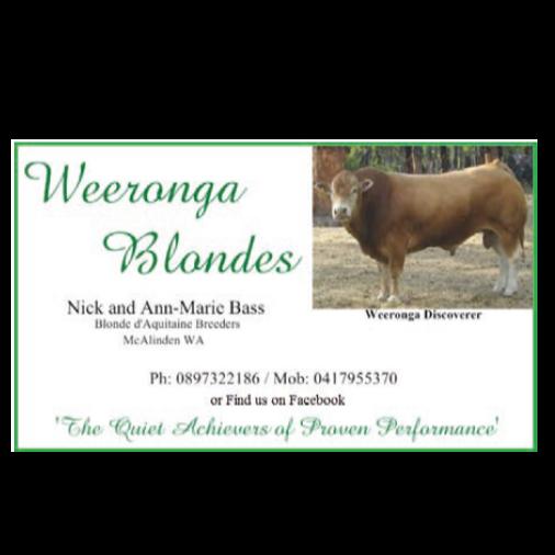 Weeronga Blondes